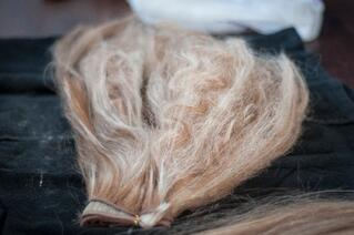 Ashley STone Hair